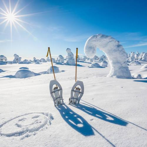 Snow shoes in fell on sunny winter day