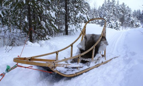 a traditional wooden dogsled in Finland. (SONY DSC)